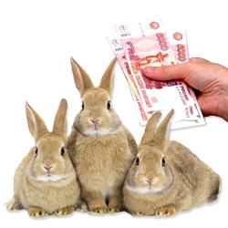 Скачать Торрент Кролики - фото 11