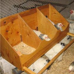 Гнездо для яиц своими руками