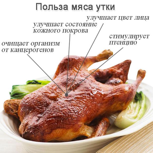 Чем вредно куриное мясо